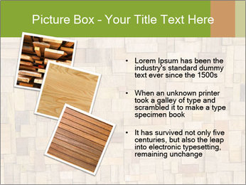 0000079076 PowerPoint Template - Slide 17