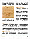 0000079076 Word Template - Page 4