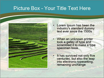 0000079080 PowerPoint Template - Slide 13