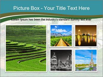 0000079080 PowerPoint Template - Slide 19