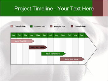 0000079084 PowerPoint Template - Slide 25