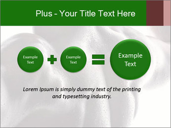 0000079084 PowerPoint Template - Slide 75