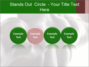 0000079084 PowerPoint Template - Slide 76