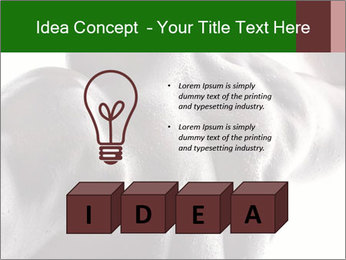 0000079084 PowerPoint Template - Slide 80