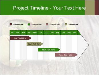 0000079090 PowerPoint Templates - Slide 25