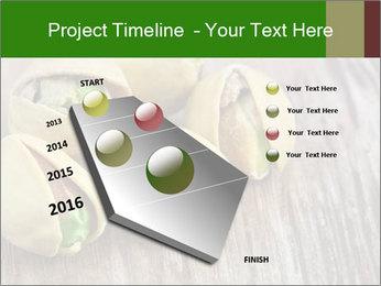 0000079090 PowerPoint Templates - Slide 26