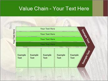 0000079090 PowerPoint Templates - Slide 27