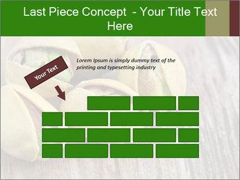 0000079090 PowerPoint Templates - Slide 46