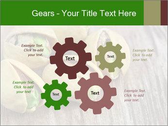 0000079090 PowerPoint Templates - Slide 47