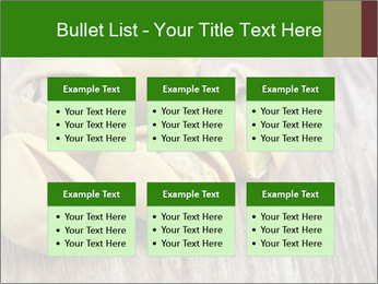 0000079090 PowerPoint Templates - Slide 56