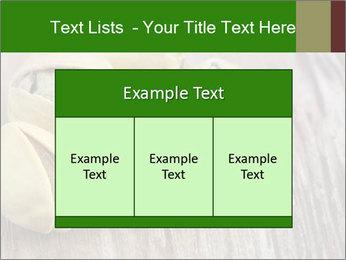 0000079090 PowerPoint Templates - Slide 59