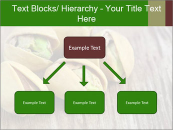 0000079090 PowerPoint Templates - Slide 69