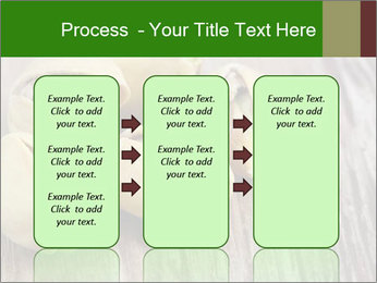 0000079090 PowerPoint Templates - Slide 86