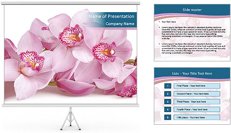0000079095 PowerPoint Template