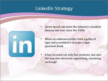 0000079095 PowerPoint Template - Slide 12