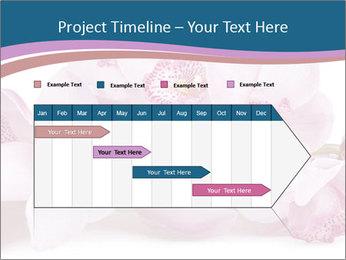 0000079095 PowerPoint Template - Slide 25