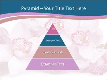 0000079095 PowerPoint Template - Slide 30