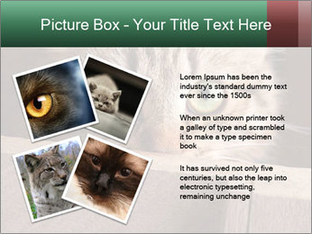 0000079099 PowerPoint Template - Slide 23
