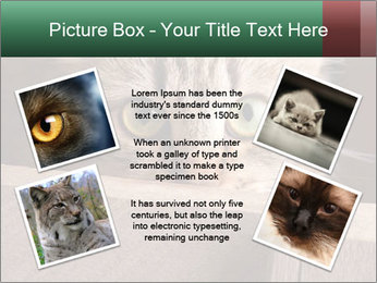 0000079099 PowerPoint Template - Slide 24