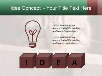 0000079099 PowerPoint Template - Slide 80