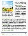 0000079101 Word Templates - Page 4
