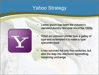 0000079102 PowerPoint Template - Slide 11