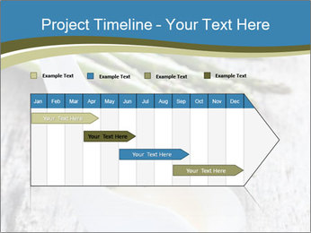 0000079102 PowerPoint Template - Slide 25