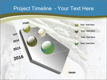 0000079102 PowerPoint Template - Slide 26