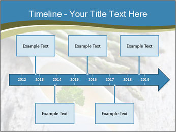 0000079102 PowerPoint Template - Slide 28