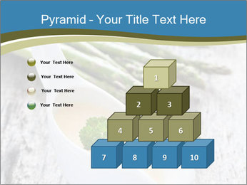 0000079102 PowerPoint Template - Slide 31