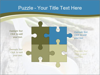 0000079102 PowerPoint Template - Slide 43