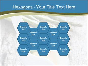 0000079102 PowerPoint Template - Slide 44