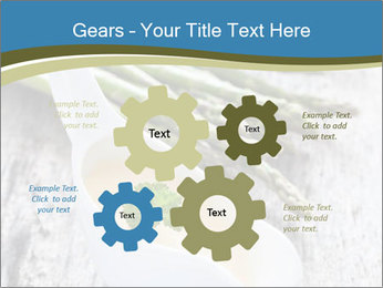 0000079102 PowerPoint Template - Slide 47