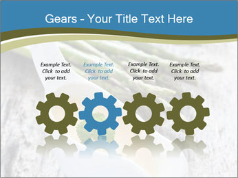 0000079102 PowerPoint Template - Slide 48