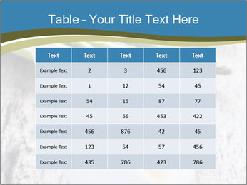 0000079102 PowerPoint Template - Slide 55