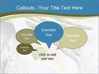 0000079102 PowerPoint Template - Slide 73