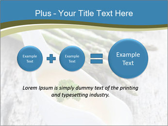 0000079102 PowerPoint Template - Slide 75