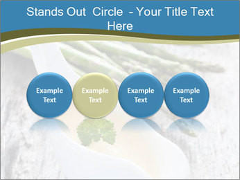 0000079102 PowerPoint Template - Slide 76