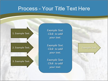 0000079102 PowerPoint Template - Slide 85