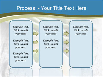 0000079102 PowerPoint Template - Slide 86