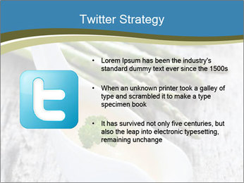 0000079102 PowerPoint Template - Slide 9