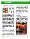 0000079103 Word Template - Page 3