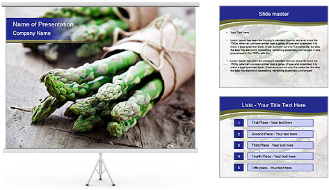 0000079108 PowerPoint Template