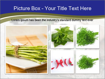0000079108 PowerPoint Template - Slide 19