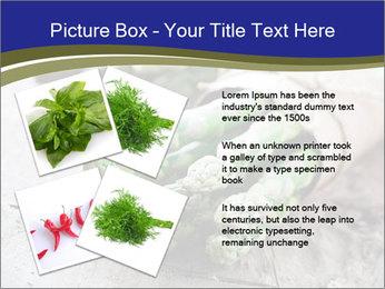 0000079108 PowerPoint Template - Slide 23