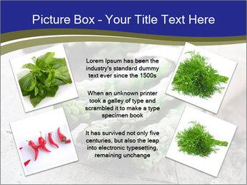 0000079108 PowerPoint Template - Slide 24