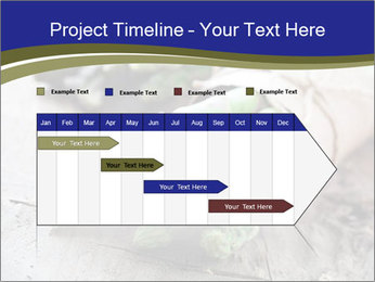 0000079108 PowerPoint Template - Slide 25