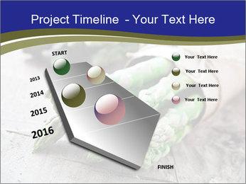 0000079108 PowerPoint Template - Slide 26