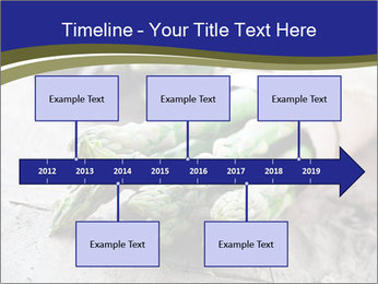 0000079108 PowerPoint Template - Slide 28