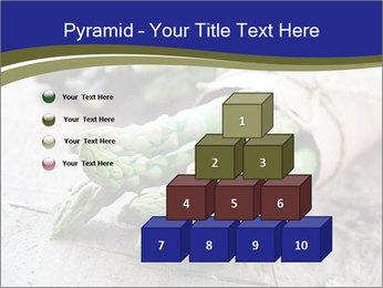 0000079108 PowerPoint Template - Slide 31